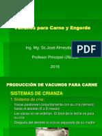Tema 8. Vacunos para Carne-Sistemas-Engorde.ppt
