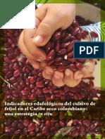 Indicadores edafológicos del cultivo del frijol en el caribe seco colombiano .pdf
