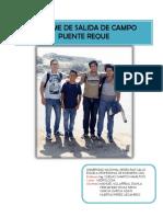 Informe de Salida de Campo (Puente Reque)