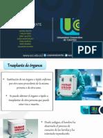 Historia de La Medicina.. Transplantes