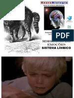 aula27.sistema_limbico_silvia.pdf