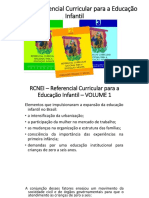 Resumo_RCNEI.pptx