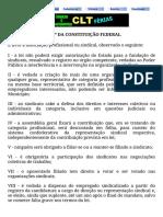 Art. 8º Da Constituição Federal - Associação Sindical
