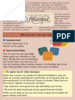Alhambra Bordspel - spelregels NL 1 de Gunst Van de Vizier Versie 1