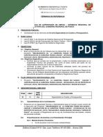 TERMINOS DE REFERENCIA   -  JOSE CONDOR.docx