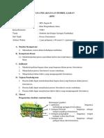 RPP Fotosintesis 2