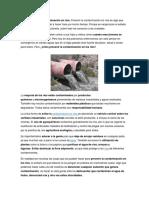 Cómo Prevenir La Contaminación en Ríos