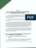 Vetas en sedimentos.pdf