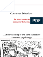 Consumer Behaviour 1