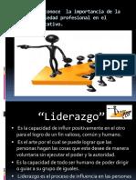 LIDERCOMPLEMENTARIEDADPROFESIONAL (3)