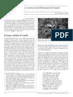 carpish.pdf