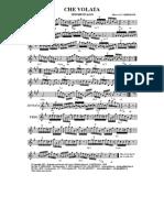 12che volata.pdf