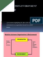 Organization Environment Interface