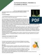 formula-as.ro-Din reţetele domnului farmacist Bobaru Sănătate cu frunze verzi II - PĂTLAGINA şi NUCUL
