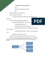 Fisiologia Do Sistema Cardíaco
