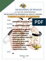 Informe Tuberculosis Pulmonar
