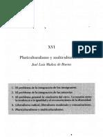 274013878-Pluriculturalismo-y-multiculturalismo.pdf
