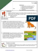 udt_01_reencuentro_1_el_robledo[1].pdf