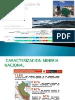 Mineria y Metalogenia Regional