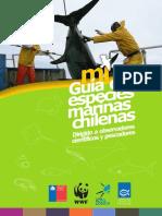 Guía de Especies Marinas Chilenas
