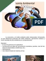 Economía Ambiental 2