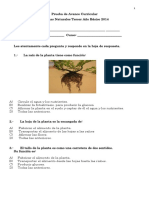 Prueba Avance Curricular Cs Naturales Tercer Año 2014