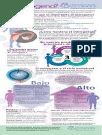 Infographic Estrogen Sp Vertical