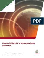 Proyecto Colaborativo Internacionalizacion Empresarial PIE