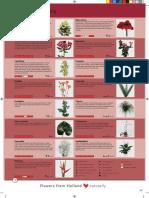 FLOWER CARE.pdf