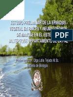 documents.tips_algas-de-manglar-de-jaltepeque.pdf