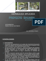 Proyecto Shumba - Presentacion