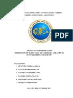 """Proyect. Imvetigacion. """"Obtención de Plántulas de Coliflor a Través de Activadores Ecológicos"""