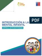 Introducción a la Salud Mental infantil