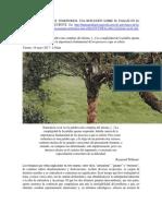Naturaleza, Paisajes, Territorios. Una Reflexión Sobre El Paisaje en El Arte Colombiano Reciente