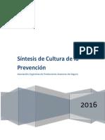 Sintesis de Cultura de La Prevencion