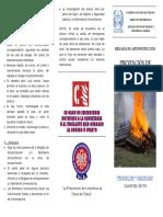 Tríptico Incendios.pdf