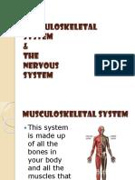 Lesson 6 - Nervous System ppt.pdf