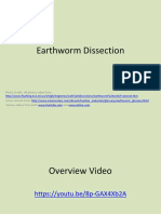 Lesson 8 - Earthworm Dissection Ppt