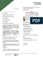 DIR_PEN_01.pdf