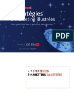 Guide Strategies Emarketing Web