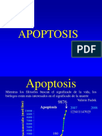Fisio Log i Adela Apoptosis 2008