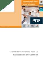 Lineamiento general para la elaboración de Panes de Cuidados de Enfermería.pdf