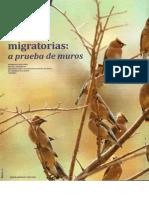 Las aves migratorias.pdf