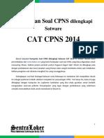 251625333-CAT-CPNS-2014