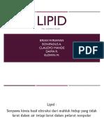 Kuningtelur Lipid