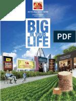ABNL Annual Report-2014-15.pdf