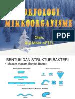 Pert-3 Morfologi Mikroorganisme