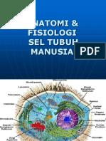 183844330 Anatomi Fisiologi Sel Ppt Edit