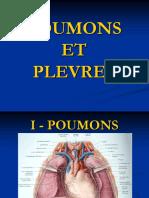 278253927 Poumons Et Plevres