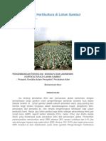 Pengembangan Hortikultura Di Lahan Gambut